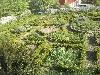 Der Auterwitzer Kräutergarten bietet für vielerlei Tees und Gerichte reichlich Grundlagen und Gewürze.